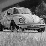 foto_käfer